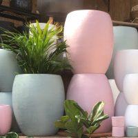 Pots / Hanging Pots